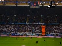 Hamburger SV - B Leverkusen_17-10-15_02