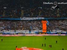 Hamburger SV - B Leverkusen_17-10-15_04