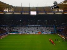 Hamburger SV - B Leverkusen_17-10-15_06