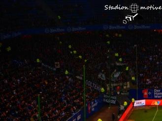 Hamburger SV - Hannover 96_01-11-15_07