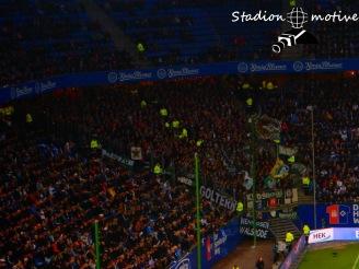Hamburger SV - Hannover 96_01-11-15_08