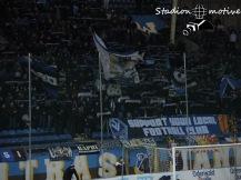 Waldhof Mannheim - FC Homburg_22-11-15_04