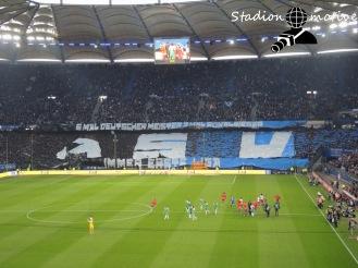 Hamburger SV - Werder Bremen_22-04-16_10