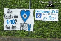 Hamburger SV 2 - VfB Oldenburg_14-05-16_03
