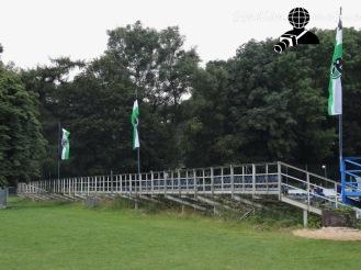 Hannover 96 2 - Hamburger SV 2_13-08-16_10