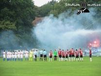 Hannover 96 2 - Hamburger SV 2_13-08-16_14