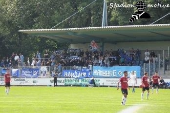 Hannover 96 2 - Hamburger SV 2_13-08-16_15