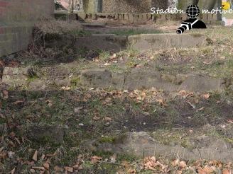 HT 16 - Störtebeker SV_12-03-17_09