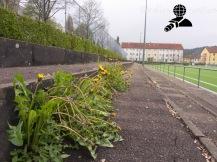 1 FC Normannia Gmünd - TSV Essingen_28-04-17_16