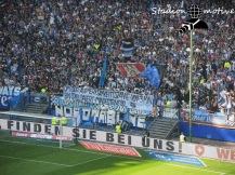 Hamburger SV - FSV Mainz 05_07-05-17_02