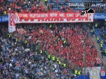 Hamburger SV - FSV Mainz 05_07-05-17_03