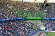 Hamburger SV - VfL Wolfsburg_20-05-17_02