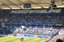 Hamburger SV - VfL Wolfsburg_20-05-17_07