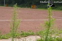 FC Veddel Utd - Altona 93_23-07-17_07