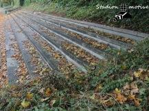 SV Henstedt-Ulzburg - TuS Bargstedt_21-10-17_07