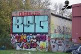 BSG Chemie Leipzig - FSV Zwickau_31-10-17_33