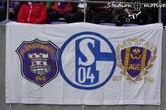 FC Erzgebirge Aue - VfL Bochum_26-11-17_02