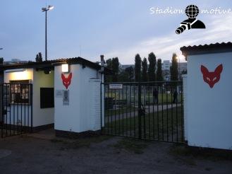 Füchse Berlin Reinickendorf - BSV Eintracht Mahlsdorf_02-05-18_10