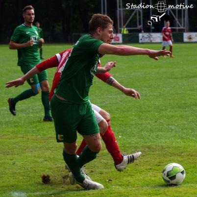 VfL 05 Hohenstein-Ernstthal - BSG Chemie Leipzig_09-09-18_15