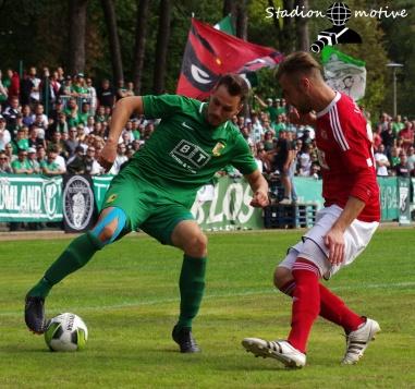 VfL 05 Hohenstein-Ernstthal - BSG Chemie Leipzig_09-09-18_18