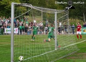 VfL 05 Hohenstein-Ernstthal - BSG Chemie Leipzig_09-09-18_21