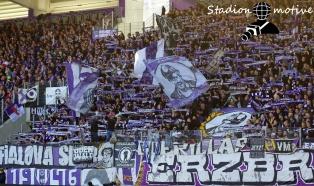 FC Erzgebirge Aue - Hamburger SV_10-11-18_10