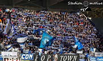 FC Erzgebirge Aue - Hamburger SV_10-11-18_18