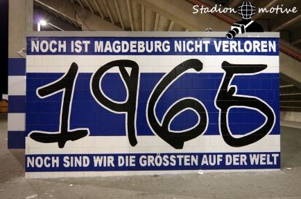 1 FC Magdeburg - FC Erzgebirge Aue_29-01-19_18