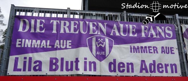 SV Sandhausen 1916 - FC Erzgebirge Aue_02-03-19_06