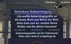 FC Erzgebirge Aue - VfL Bochum 1848_28-04-19_12