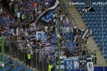 Hamburger SV - SV Darmstadt 98_28-07-19_04