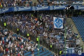 Hamburger SV - SV Darmstadt 98_28-07-19_05