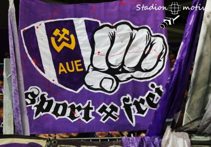 FC Erzgebirge Aue - DSC Arminia Bielefeld_31-01-20_01