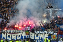Karlsruher SC - Hamburger SV_01-06-15_15