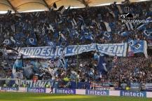 VfB Stuttgart - Hamburger SV_19-04-14_08