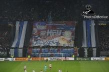 Hamburger SV - Bayern München_29-10-14_06