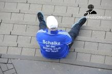 Hamburger SV - FC Schalke 04_23-05-15_12