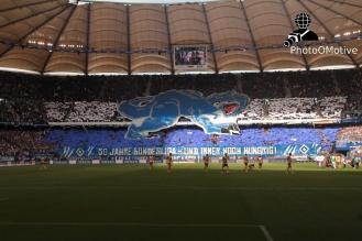 Hamburger SV - E. Braunschweig_31-08-13_03