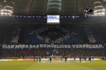 Hamburger SV - FC B. München_12-02-14_02