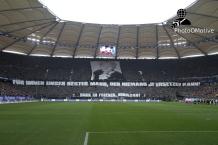 Hamburger SV - B. Dortmund_22-02-14_04
