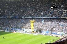 Hamburger SV - FC Schalke 04_23-05-15_07