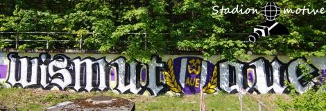 FC Erzgebirge Aue - SV Sandhausen 1916_16-05-20_08