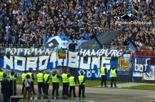 Karlsruher SC - Hamburger SV_01-06-15_08