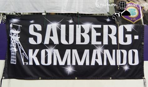 FC Erzgebirge Aue - SpVgg Fürth_29-09-20_07